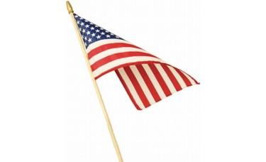 "American Stick Flag 8"" x 12"""