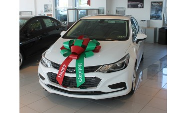 "30"" Red/Green ""Happy Holidays"" Car Bow"