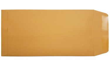 Blank License Plate Envelopes (Package of 100)