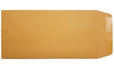 Blank License Plate Envelopes (Package of 100)